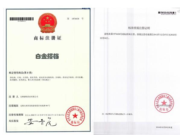 白金搭档商标注册证